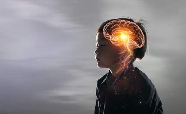 Интеллект у детей, что влияет на его развитие?