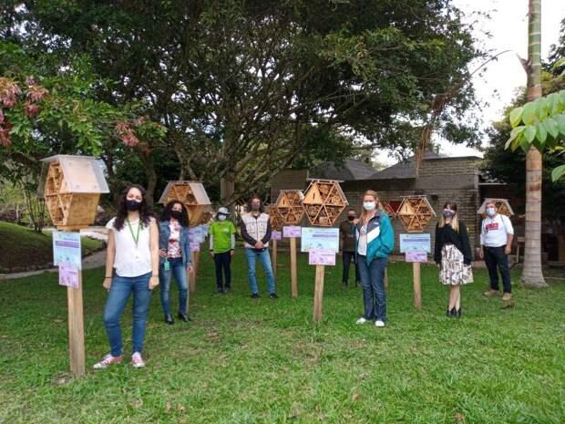 В Колумбии построили бамбуковые отели для пчел