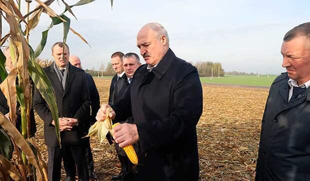 Жириновский предложил отправить Лукашенко руководить совхозом