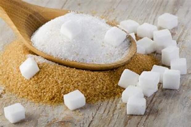 ФАС подготовила проект о продлении соглашений по ценам на подсолнечное масло и сахар