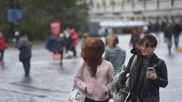 «Желтый» уровень опасности из‑за ветра и дождя объявили в Московском регионе