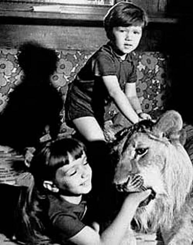 Трагическая история семьи Берберовых, которая держала льва в простой советской квартире