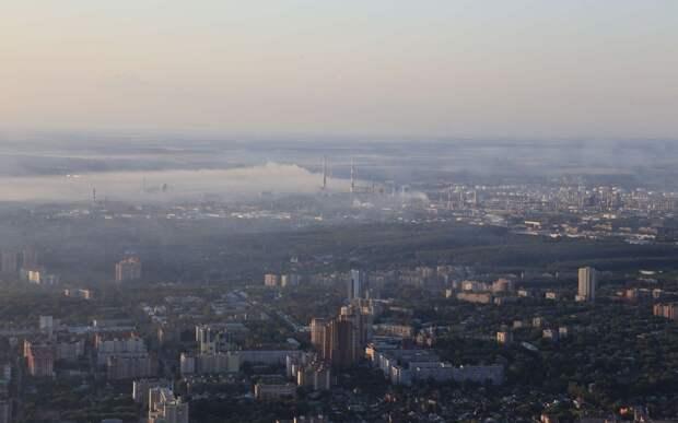 Рязанские активисты заявили о пожаре в лесу около полигона в Дубровичах