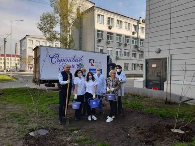 «Сиреневый день» в Красноярске отметил первый юбилей