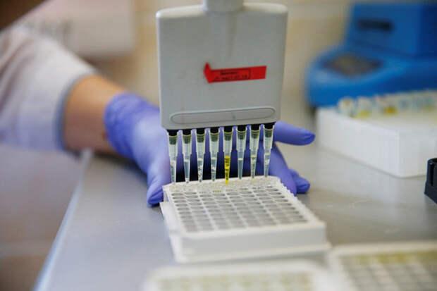 За сутки в Краснодарском крае зафиксировано 98 случаев COVID-19