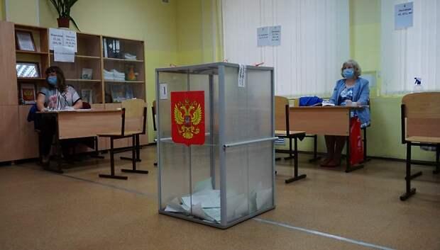 Явка на голосовании по Конституции РФ в Подмосковье на 18:00 превысила 70%