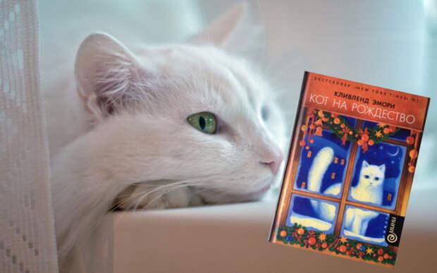 8 увлекательных книг о котах, в которых они стали главными героями