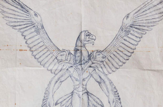 Загадочный чемодан с изображениями пришельцев нашли среди мусора