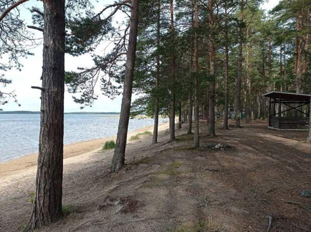 В Карелии от мусора очистят 136 км берегов рек и озер