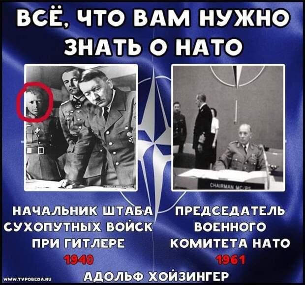 Всё, что нам нужно знать о НАТО