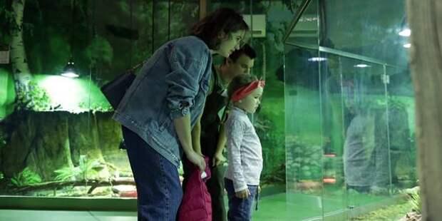 Новый павильон «Змеиное сафари» открылся в Московском зоопарке