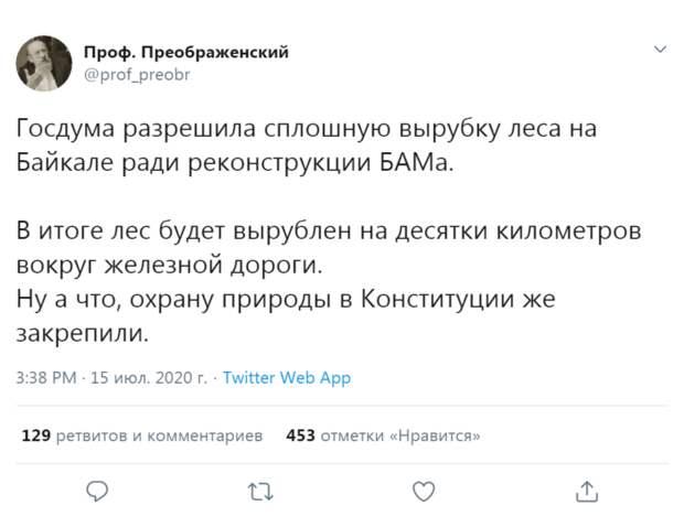 Дума разрешила сплошную вырубку леса на Байкале
