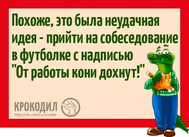 https://pp.vk.me/c636321/v636321596/2288a/nryMk668fZQ.jpg