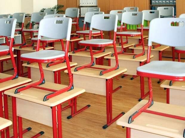 В Петербурге школа заплатит за нападение ученика на сверстницу