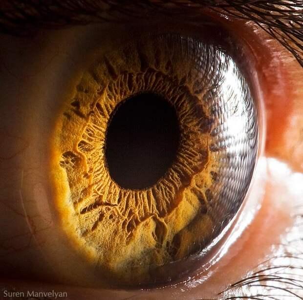 eye-macro-photo-2