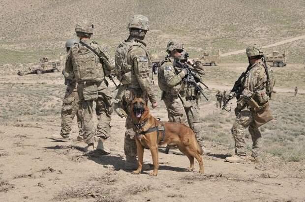 США могут перебросить войска из Афганистана ближе к границам РФ — WSJ