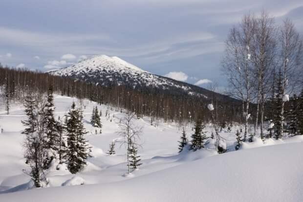 Ученый рассказал об опасности потепления климата в Сибири
