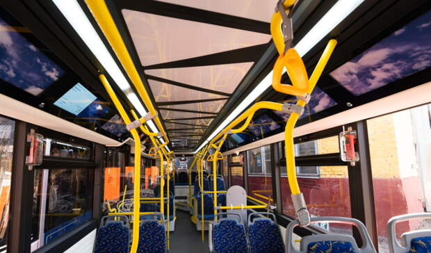 Ветеран иего сопровождающая несмогли бесплатно проехать вбелгородском автобусе