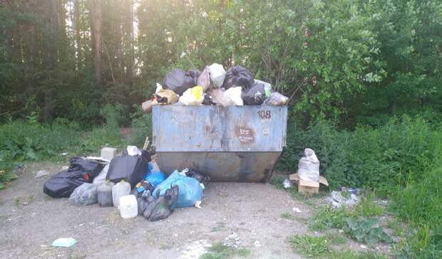 Мебель, отходы иветки: рейд TagilCity.ru посвалкам всадах Нижнего Тагила