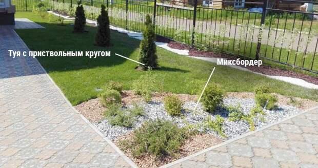 Оформление газона декоративными растениями