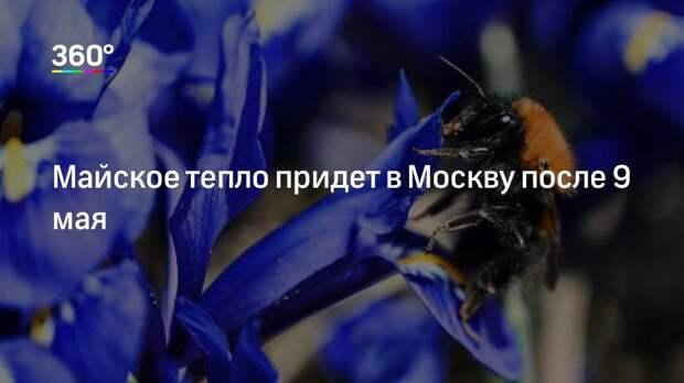 Майское тепло придет в Москву после 9 мая