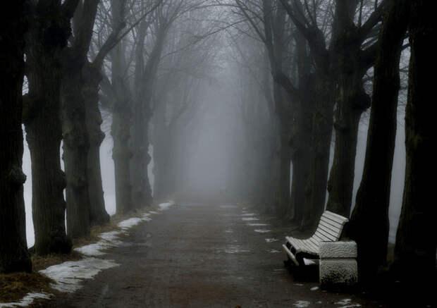 In the spring park........... by Юрий Цыплятников on 500px.com