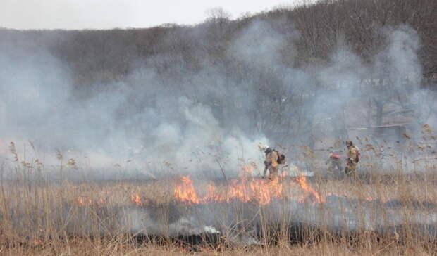Впраздники— без костров: вНижегородской области введен противопожарный режим