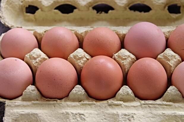 Куриные яйца могут стать дефицитом в России