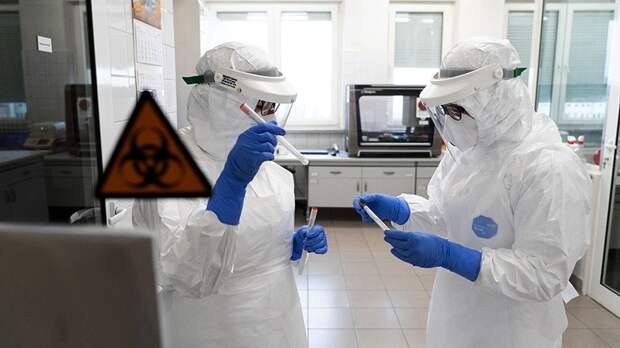 В Мурманской области выявили 35 случаев COVID-19 за сутки