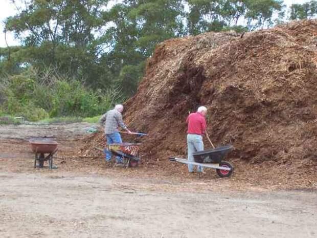 О пользе опилок - как влияют опилки на почву