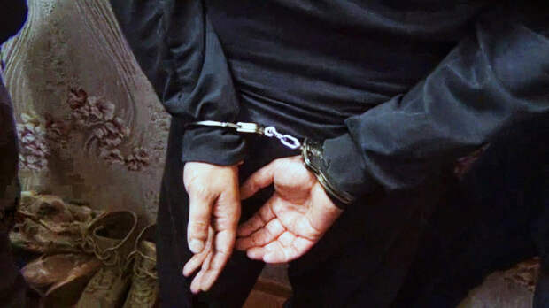 В вышиванке и с парашютом: Самые заметные шпионы, задержанные в России в 2020 году