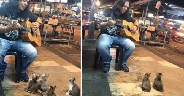 Крошечные ценители музыки пришли послушать уличного музыканта