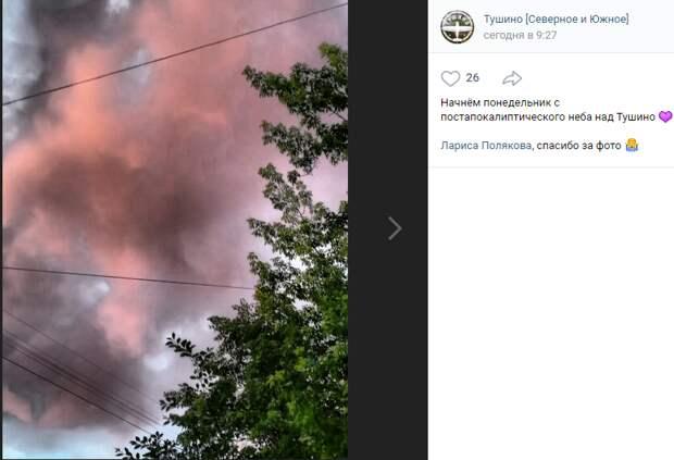 Фото дня: малиновые облака над Тушино