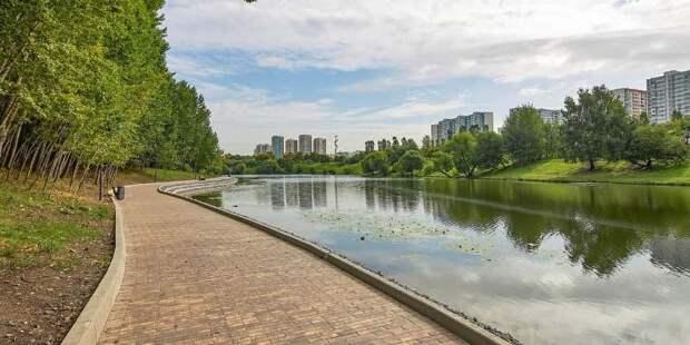 Москвичи примут участие в разработке проектов благоустройства районов