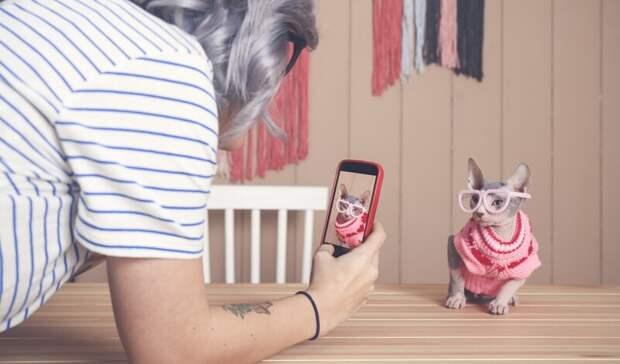 Продажи смартфонов по программе trade-in в Приволжье выросли в 3,5 раза