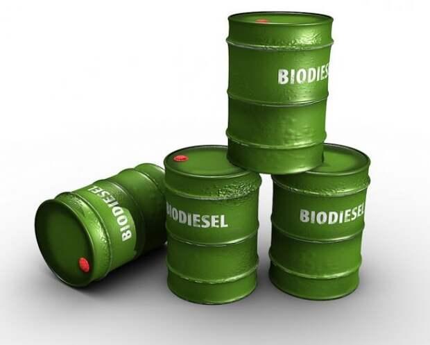 COVID-19 парадоксально ударил по производству биотоплива