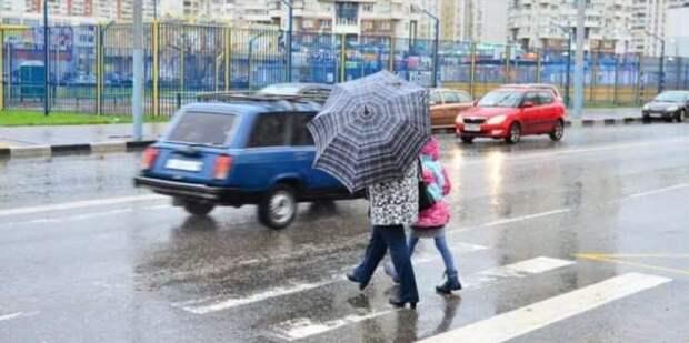 Верховный суд обязал водителей дожидаться, пока пешеходы покинут дорогу (3 фото + 1 видео)
