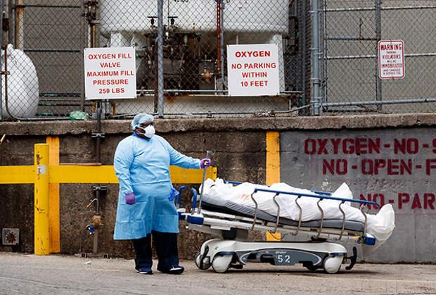 Пандемия коронавируса: путь туда, но не обратно