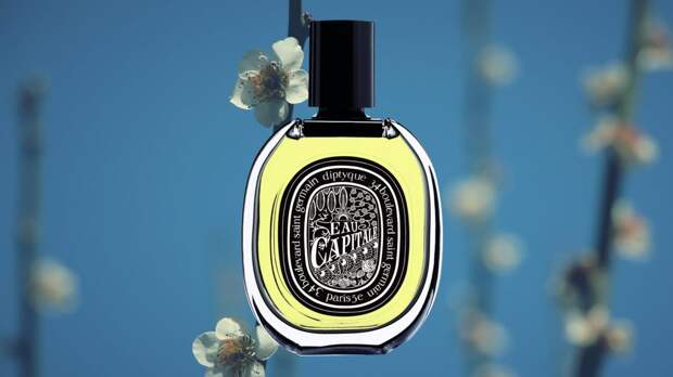 diptyque-eau-capitale-fragrance-review-scaled