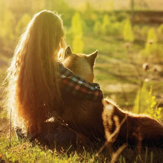 Собака - это не лекарство и не терапия! Почему мы не отдаем собак в семьи с особенными детьми