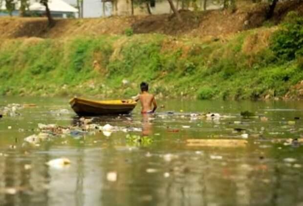 Ядовитые воды Индонезии (2019)