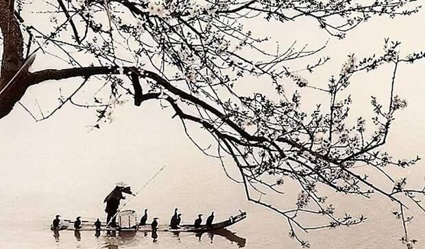 «Бывает, что лист тонет, а камень плывет»: 10 японских мудростей, которые пригодятся в трудную минуту
