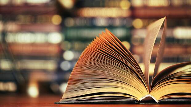 В Петербурге начал работу книжный фестиваль