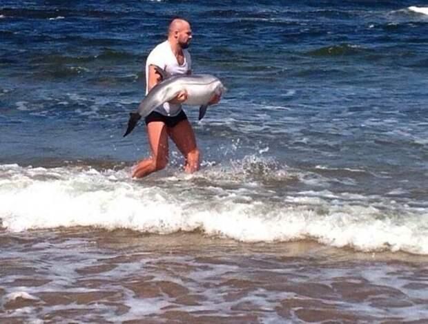 Просто случайный человек возвращает в море дельфина