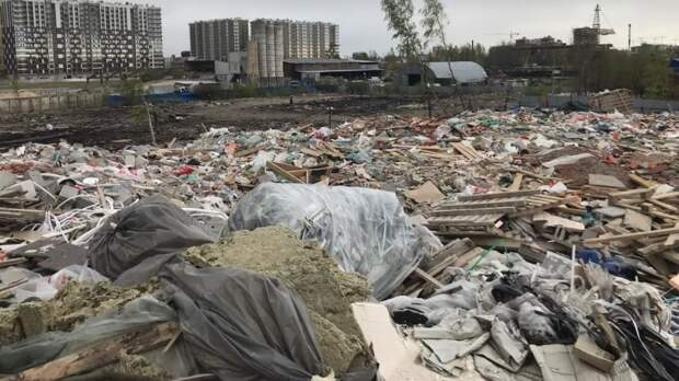 Петербуржец заплатил за свалку с токсическим мусором более двух миллионов рублей