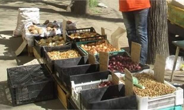 В Кирове продавец стихийного рынка получил штраф в 3 тысячи рублей