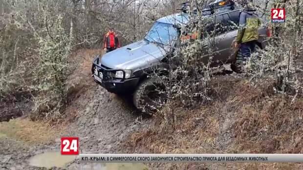 Незаконная охота на колёсах. Как джиперы портят лес, а главное, можно ли их наказать?