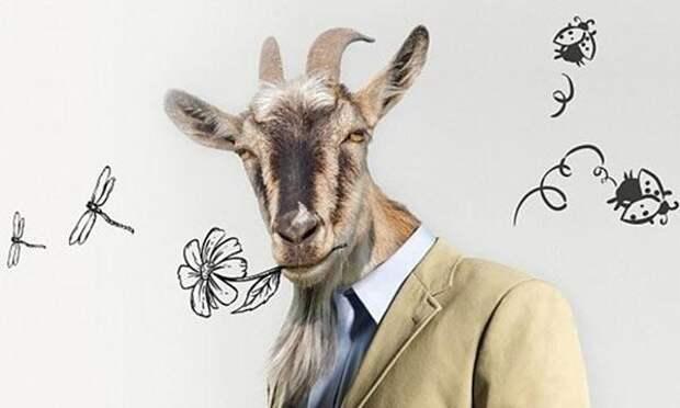 10 признаков «мужа-козла»: как выявить настоящее ч..о?