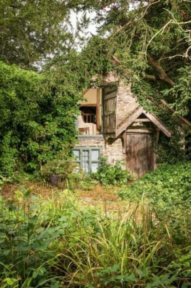 За 600 лет старинная постройка в прямом смысле слов сжилась с окружающей природой («Wishbone Cottage», Великобритания).   Фото: uniquehomestays.com.