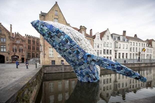 Мусорный кит